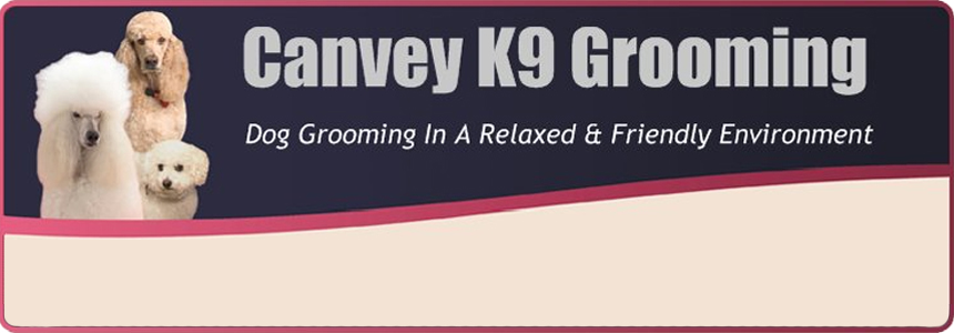 Dog Grooming Canvey Island